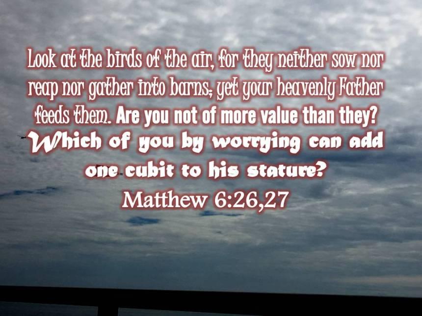 Matthew 6 26 27
