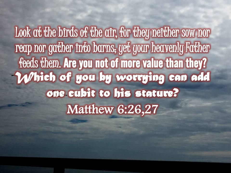 Matthew 6:26,27